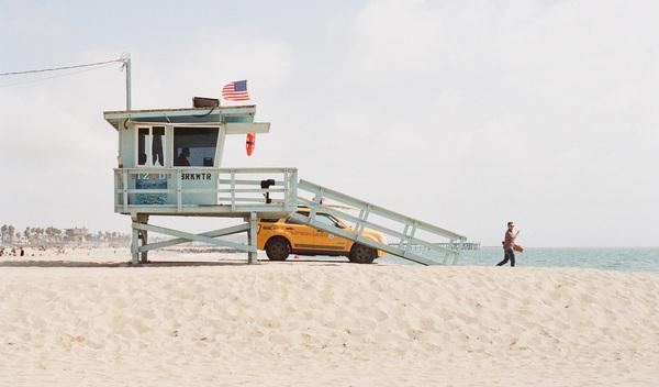 Lifeguard 405923