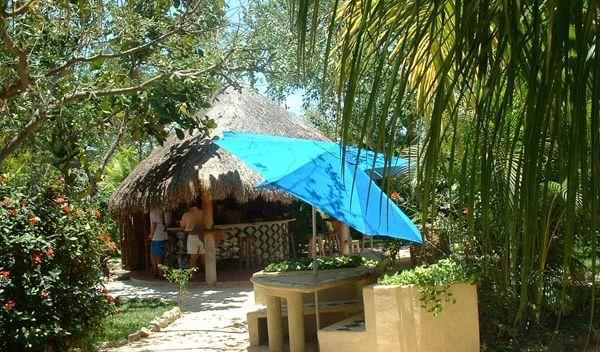 Sprachschule playa del carmen garten studylingua